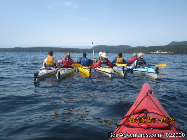 Orca Sea Kayak Trips in Johnstone Strait Whale Watching British Columbia