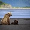 Alaska - Kodiak Island
