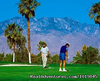 Desert Princess Resort Vacation Rentals California