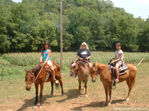 Friendly Horses - Cedar Hill Ranch