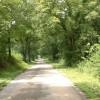 Cedar Hill Ranch