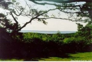 Celeb Owned Hilltop Waterview Retreat Chilmark, Massachusetts Vacation Rentals