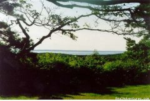 Celeb Owned Hilltop Waterview Retreat Vacation Rentals Massachusetts