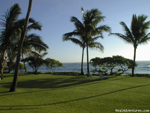 Grounds at Sunrise - Kapaa Shore Resort