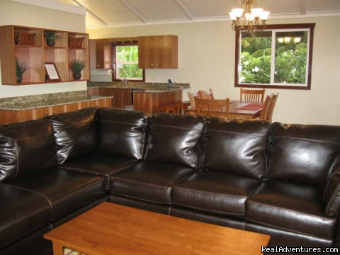 Comfortable living room. - Beach House w/Pool, Sleeps 8, Newly Remodeled