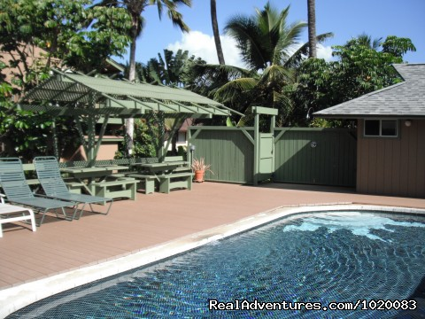 Pool deck and outside shower (#1 of 17) - Beach House w/Pool, Sleeps 6-10, Newly Remodeled