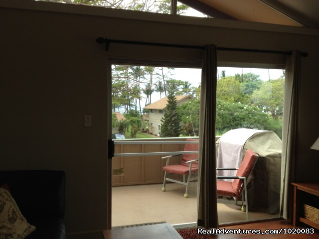 Outside lanai and BBQ - Beach House w/Pool, Sleeps 8, Newly Remodeled