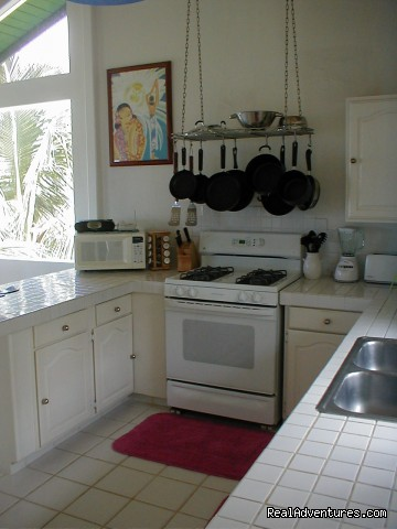 Ocean Lookout - kitchen - Huelo Point Lookout...a romantic B&B retreat