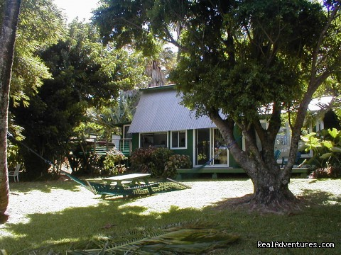 Star Lookout ... tucked away in green - Huelo Point Lookout...a romantic B&B retreat