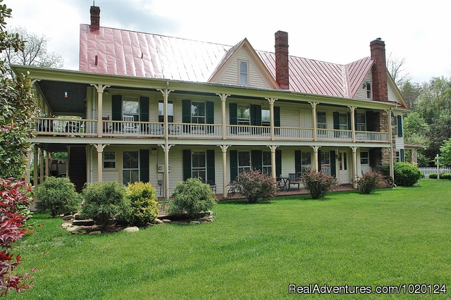 Country hospitality at the Hummingbird Inn: The Hummingbird Inn