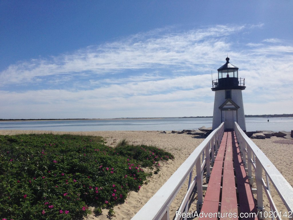 Image #16/16 | Northern Exposure Nantucket