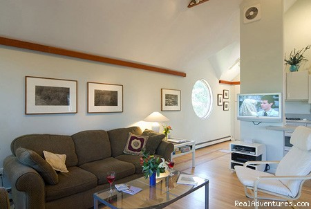 The bright, contemporary interior - The Laurel, a 2BR and or 1BR Guest House