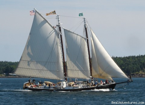 Sailing on the bay - Sailing aboard a Maine Windjammer