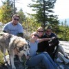 Hurricane Mountain Hike w/ the dogs