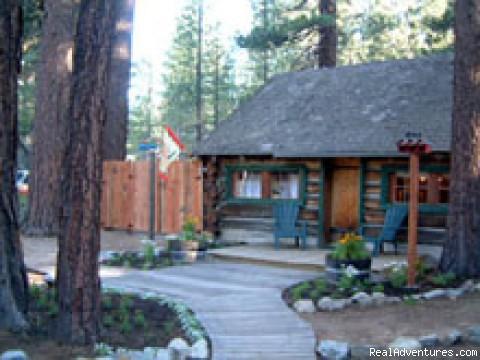 Adorable log cabin: Adorable Log Cabin