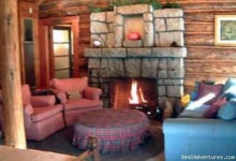 Living Room - Adorable log cabin
