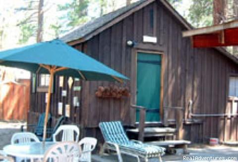 - Adorable log cabin
