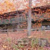 Pondview exterior during Fall Peak leaves falling