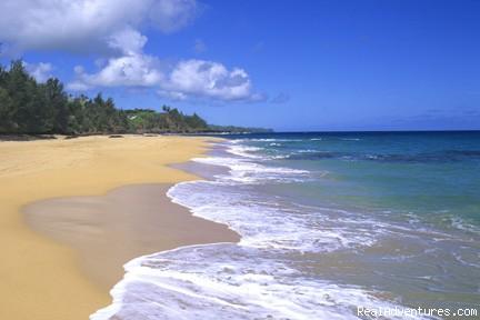 Rv Rentals On The Big Island Of Hawaii