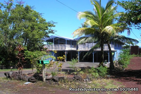 House from street - Tropical Retreat Kapoho