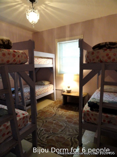 Bijou dorm for 6 w private bathroom - Everglades Hostel & Tours