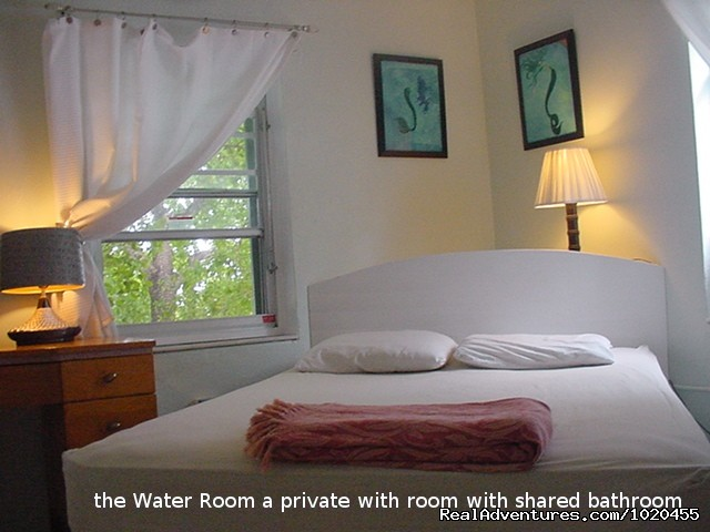 Water Room - Everglades Hostel & Tours