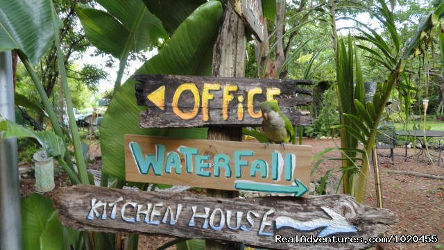 Everglades Hostel & Tours