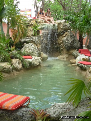 The Gardens at Everglades Hostel - See the Everglades with a Guide