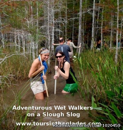 - See the Everglades with a Guide