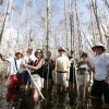 See the Everglades with a Guide