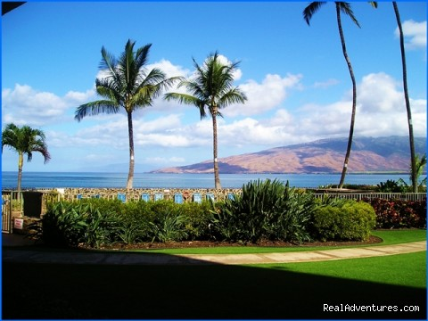 View from oceanfront condo - Ocean Breeze Hideaway--Maui B&B & Oceanfront Condo
