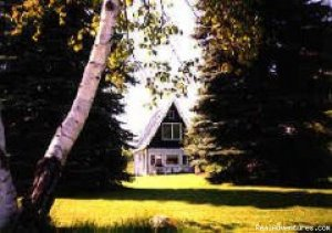 Cottage For Rent, Ontario Canada Orillia, Ontario Vacation Rentals