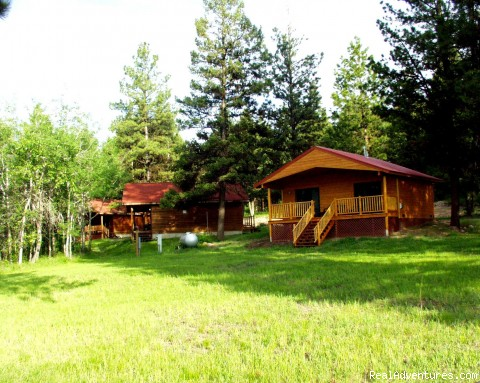 Newer Western Cabins nestled in the trees - Discover the Rich Ranch Outfitting and Guest Ranch