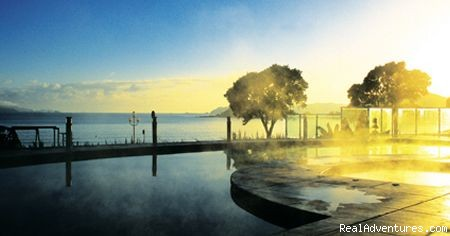 Poolside View & Ocean - Paihia Beach Resort, New Zealand