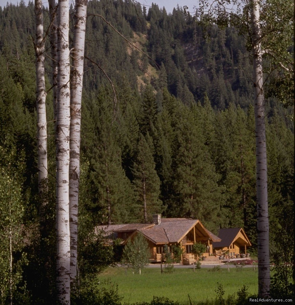 Pines Lodge | Image #2/9 | Mountain Springs Lodge, Lodging and Activities