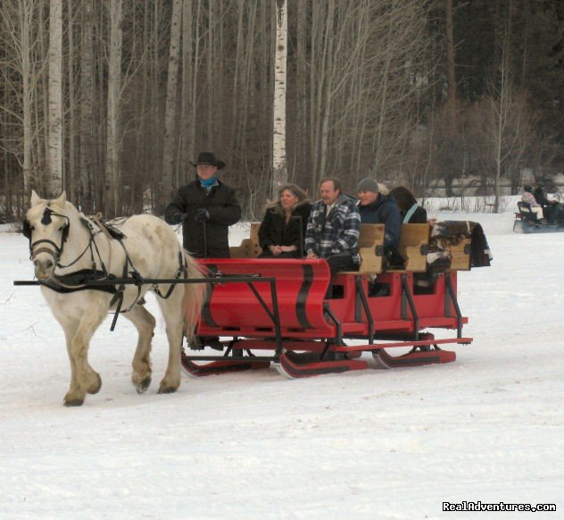 Sleigh Rides | Image #6/9 | Mountain Springs Lodge, Lodging and Activities