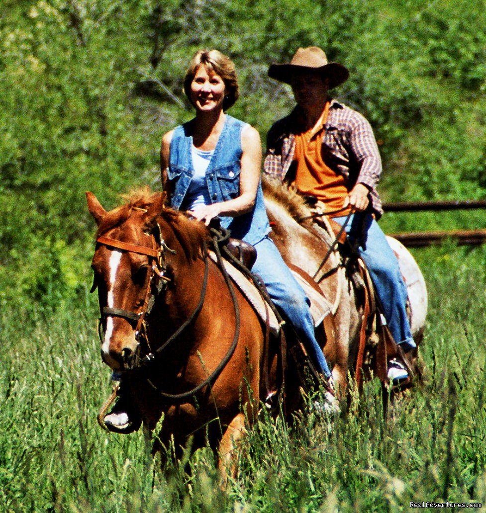 Board Your Horse | Image #9/9 | Mountain Springs Lodge, Lodging and Activities