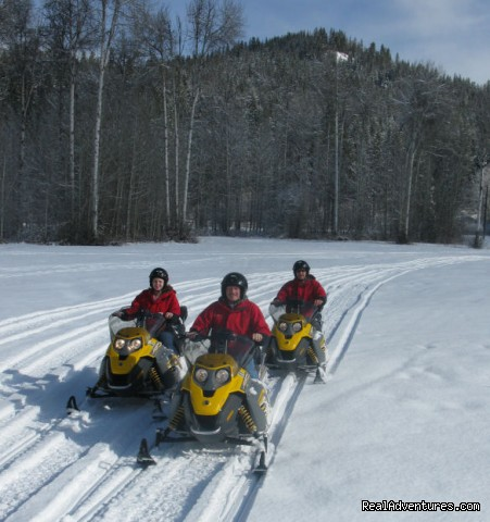Snowmobile Tours - Mountain Springs Lodge, Lodging and Activities
