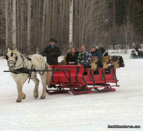 Sleigh Rides - Mountain Springs Lodge, Lodging and Activities