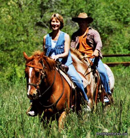 Board Your Horse - Mountain Springs Lodge, Lodging and Activities