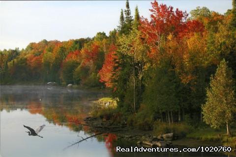 Rv Rental London Ontario >> Sunny Rock Bed & Breakfast Haliburton Highlands ON, Minden (Haliburton Highlands), Ontario Bed ...