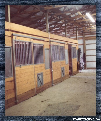 Stabling facility (#6 of 6) - Come back to Granny's house