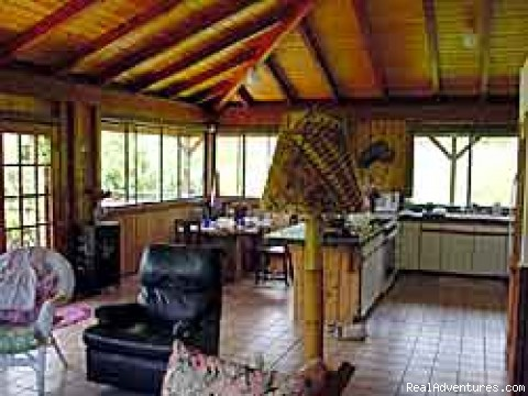 living room - Makaleha Mountain Retreat perfect for honeymoons