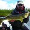 Spence Lake Walleye