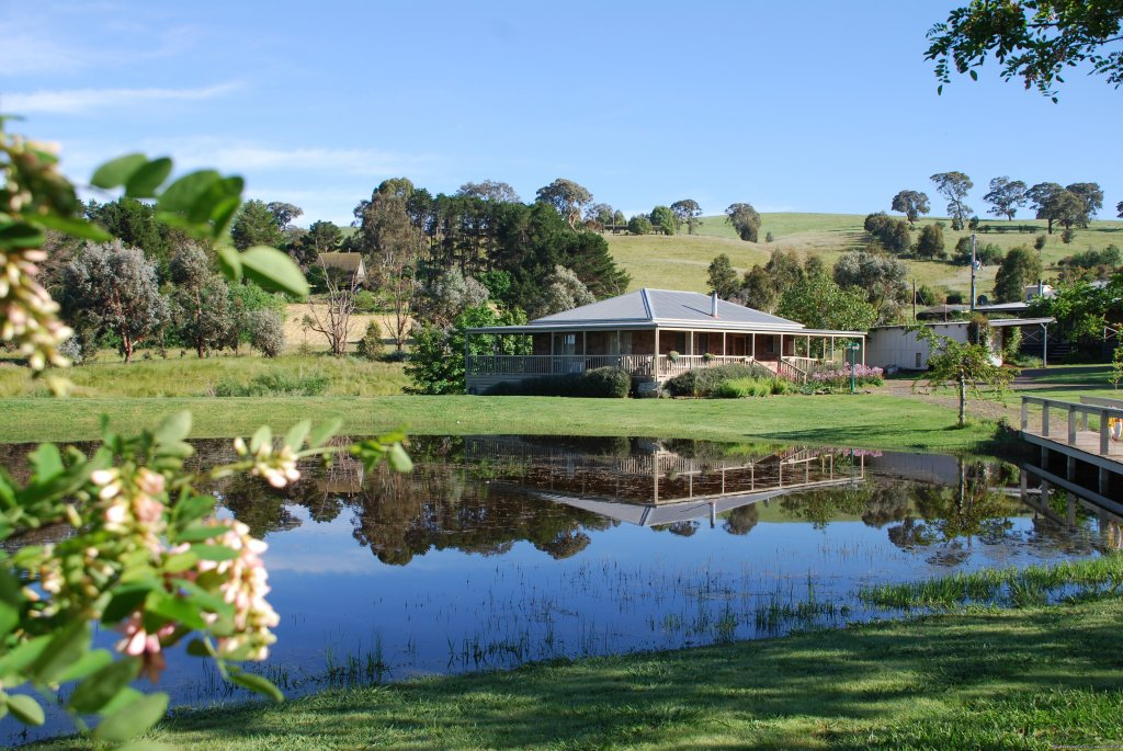 A very full dam after a very wet winter | Image #5/6 | Romantic Buttercup Cottage & Private Apartment