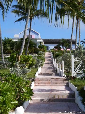 The hillside - Romora Bay Club, Harbour Island, Bahamas