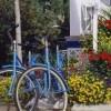 Ride Our Bikes
