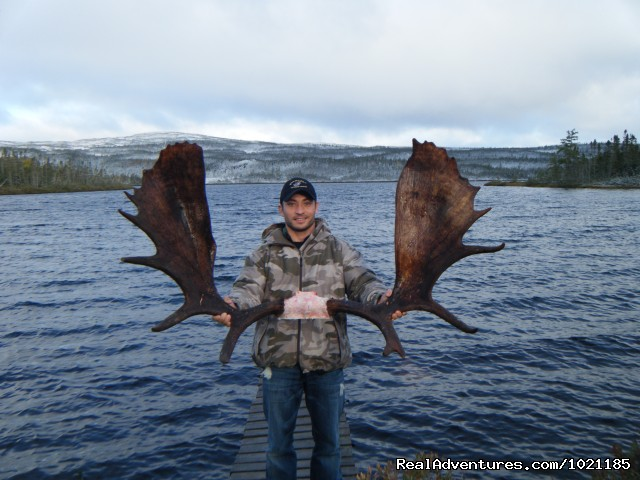 Moose Valley Outfitters LTD Hunting Trips .Newfoundland, Newfoundland