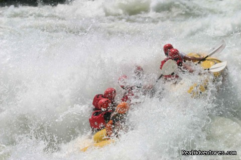 BIG WATER TRIPS for Adult Class V+ - Bill Dvorak Rafting, Kayak & Fish Exp.Since 1969