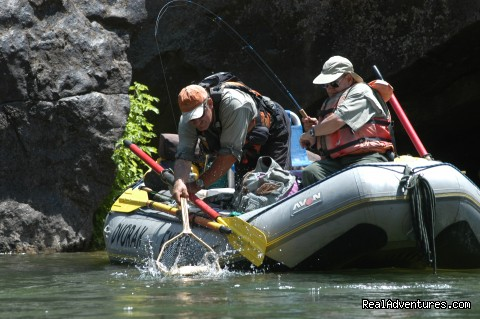 Custom float Fly fishing trips - Bill Dvorak Rafting, Kayak & Fish Exp.Since 1969